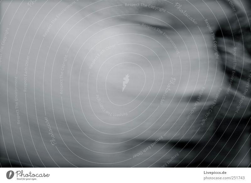 Psycho Rodden Mensch maskulin Mann Erwachsene Kopf 1 grau schwarz weiß Schwarzweißfoto Außenaufnahme Tag Unschärfe Zentralperspektive Porträt Blick nach vorn
