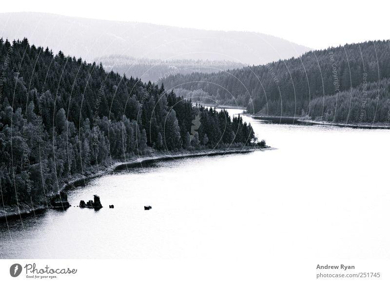 Fog Umwelt Natur Landschaft Wasser Himmel Horizont Herbst Baum Sträucher Moos Blatt Grünpflanze Berge u. Gebirge See alt authentisch dunkel groß Unendlichkeit