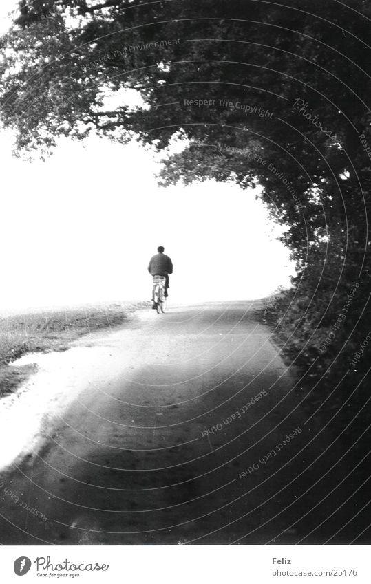 Unterwegs Ferien & Urlaub & Reisen Einsamkeit Wald Leben Wege & Pfade Fahrrad Verkehr
