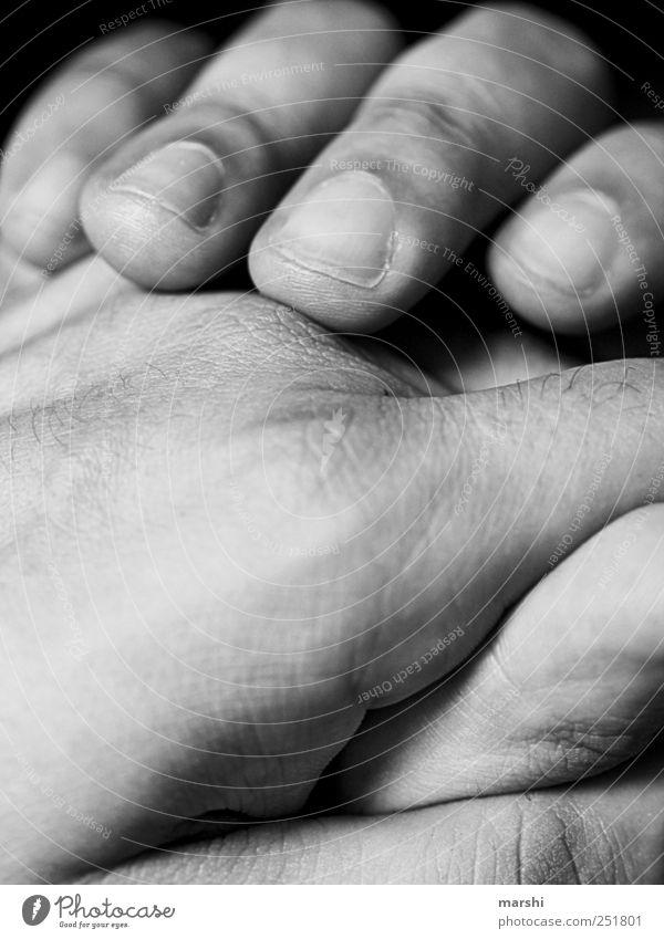 liebevolle Hände Mensch maskulin Haut Hand Finger weich Nagel Detailaufnahme Männerhand gepflegt Falte Schwarzweißfoto