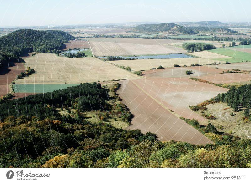 Aussicht wandern Umwelt Natur Landschaft Himmel Sommer Herbst Klima Wetter Schönes Wetter Pflanze Baum Feld Wald Hügel Horizont Landwirtschaft Farbfoto
