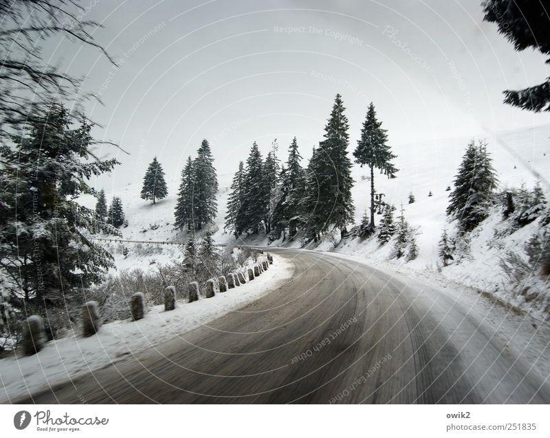 Winterdienst Ferne Reisefotografie Reiseroute Umwelt Natur Landschaft Pflanze Himmel Horizont Klima Schönes Wetter Eis Frost Schnee Baum Berge u. Gebirge