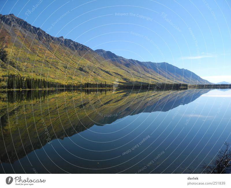 Annie Lake - doppelt schön Natur Landschaft Wasser Himmel Wolkenloser Himmel Horizont Herbst Schönes Wetter Berge u. Gebirge Teich See Whitehorse ästhetisch