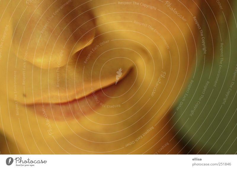 Peter´s Jugendliche feminin Glück Mund Nase authentisch Junge Frau Leberfleck Verschmitzt