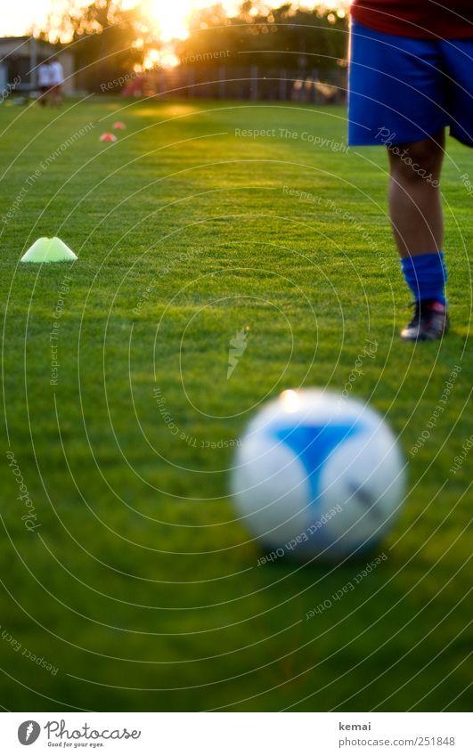 19.30 Uhr, Trainingsbeginn Mensch Frau blau grün Sommer Erwachsene Wiese Leben Sport Beine Fuß hell Freizeit & Hobby Fußball stehen