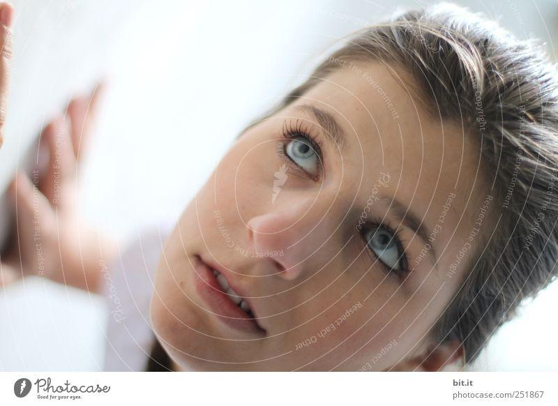 die Wand hochgehen feminin Junge Frau Jugendliche Erwachsene Kopf Gesicht Auge Ohr Nase Mund Hand 18-30 Jahre brünett Zopf hell schön Neugier Sauberkeit weiß