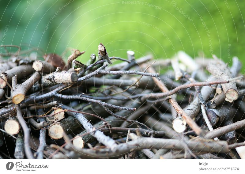 Kleinholz Natur Wiese Herbst Holz Garten Park planen Ast Landwirtschaft durcheinander Stapel Gartenarbeit Forstwirtschaft Geäst Brennholz Holzstapel