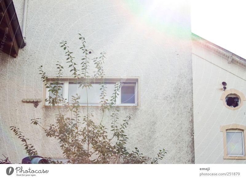 Fenster, eckig & rund, kaputt & ganz alt Wand grau Mauer Fassade Fabrik Industrieanlage