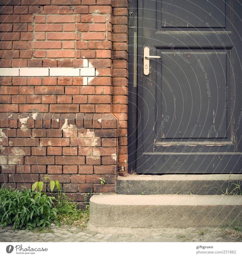 hereinspaziert! Mauer Wand Treppe Fassade Tür Griff Kommunizieren geschlossen Pfeil Schilder & Markierungen Backstein Pflanze Grünpflanze eintreten Eingang