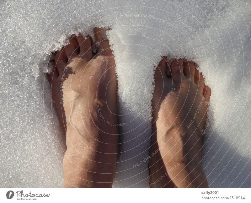 cool down... Fuß 1 Mensch Urelemente Winter Eis Frost Schnee Erholung frieren stehen kalt weiß Mut Selbstbeherrschung standhaft Kühlung Zehen Farbfoto