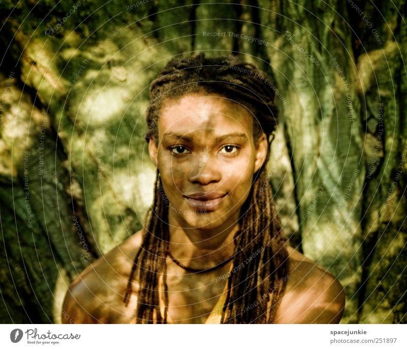 into the light Mensch Natur Jugendliche schön Baum feminin Umwelt Landschaft Erwachsene glänzend wild einzigartig leuchten Neugier beobachten Afrika