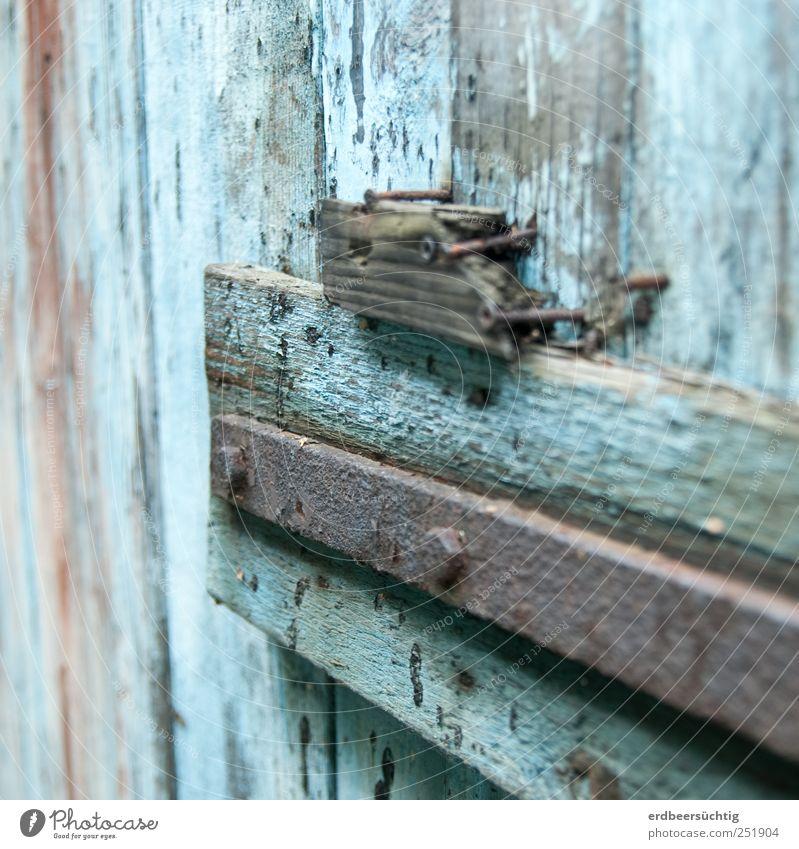 verwittert Hochhaus Tür Holz alt blau Tor Lagerschuppen morsch verrotten Nagel abblättern Farbe Zeit Vergänglichkeit Farbfoto Detailaufnahme Textfreiraum oben
