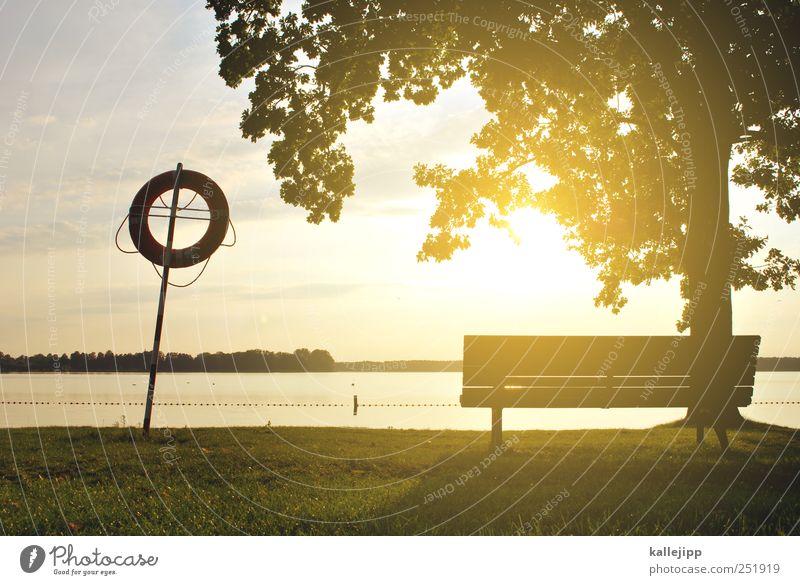 nichtschwimmer Lifestyle Freizeit & Hobby Schwimmbad Pflanze Baum Park Wiese Küste Seeufer Glück Freibad Badeort Rettungsring Horizont Farbfoto Menschenleer