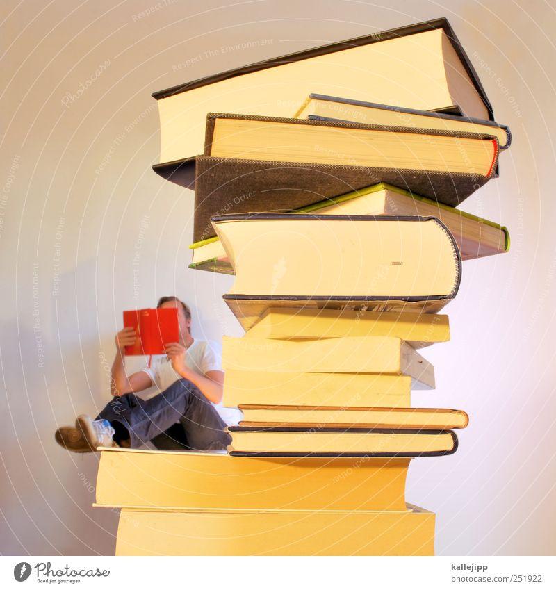 3700_seiten Mensch Mann Erwachsene klein Buch groß maskulin Studium lernen lesen Kultur Bildung Medien Interesse Stapel Printmedien