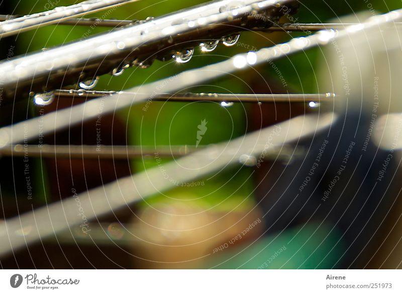 Regen Regen Tröpfchen... Wasser blau weiß grün kalt Garten grau Traurigkeit Metall Linie Wetter nass glänzend Wassertropfen trist