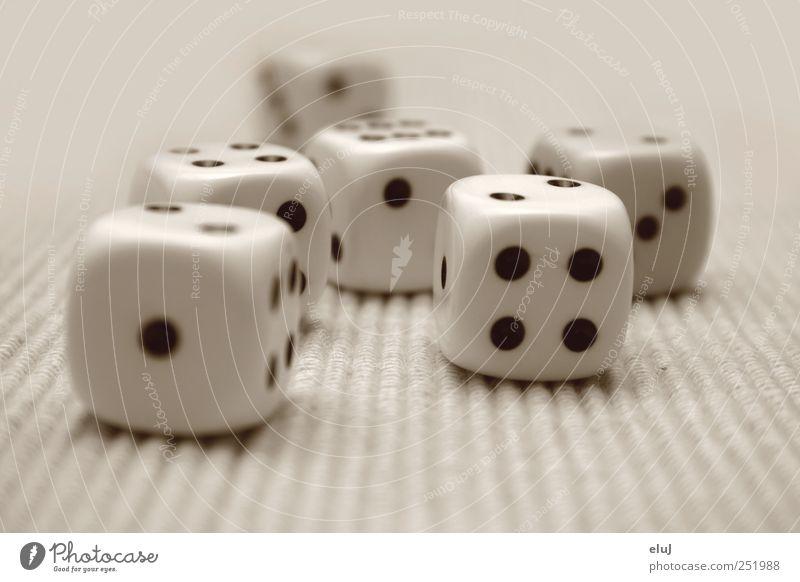 Die Würfel sind gefallen Freizeit & Hobby Spielen Glücksspiel Kinderspiel schwarz weiß Freude Spielsucht Spielzeug Kniffel Augenzahl Farbfoto Schwarzweißfoto
