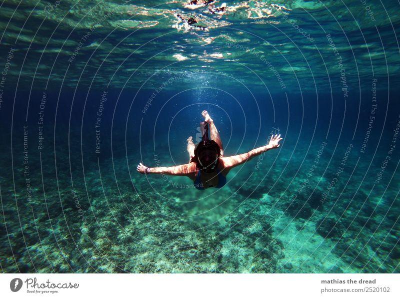 UNTER DEM MEER Ferien & Urlaub & Reisen Tourismus Abenteuer Sommerurlaub Meer Sport Schwimmen & Baden tauchen feminin Junge Frau Jugendliche Landschaft Wasser