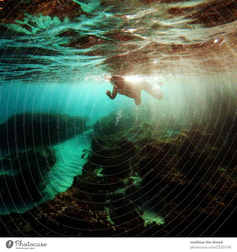 UNTER DEM MEER Ferien & Urlaub & Reisen Tourismus Abenteuer Sommerurlaub Schwimmen & Baden tauchen feminin Junge Frau Jugendliche Bikini Bewegung ästhetisch