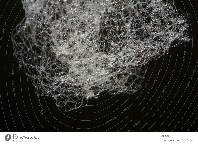 Netz weiß zart fein filigran dünn Stoff durcheinander Farbfoto Gedeckte Farben Innenaufnahme Nahaufnahme Strukturen & Formen Menschenleer Textfreiraum unten