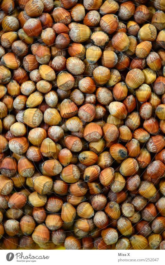 Viel Spaß beim Knacken Ernährung Lebensmittel Gesundheit braun viele Ernte lecker Gesunde Ernährung Kerne verkaufen Bioprodukte Hülle Nuss Zutaten Haselnuss