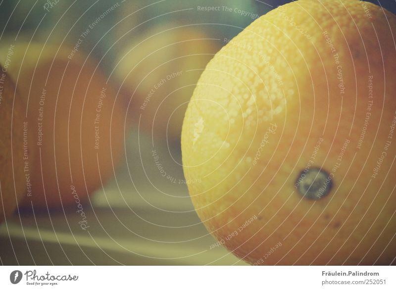 Vitamin C. Lebensmittel Frucht Orange Mandarine Ernährung Frühstück Bioprodukte Vegetarische Ernährung Saft liegen frisch rund saftig sauer süß blau Farbe