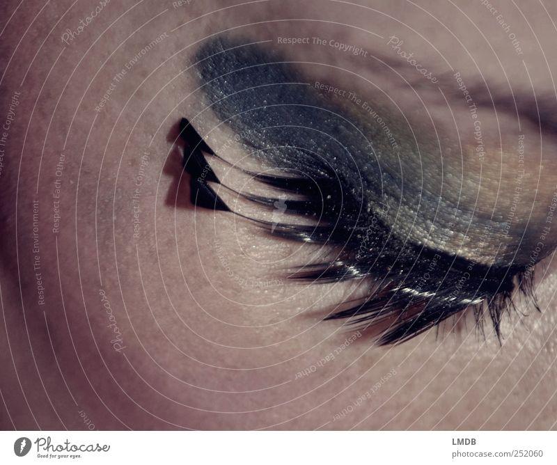 Pfauen-Auge (2) Mensch schön ruhig schwarz Erwachsene Gesicht Auge feminin Beautyfotografie Feder 18-30 Jahre Karneval Kosmetik Schminke Junge Frau Wimpern