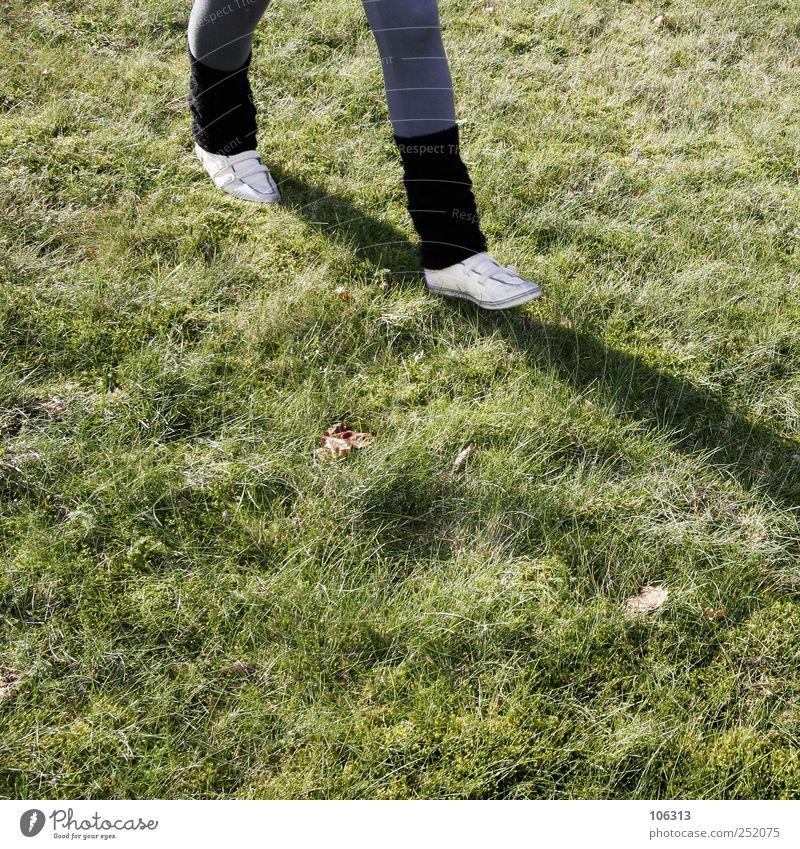 Fotonummer 208634 wandern Gras Wiese Fitness gehen laufen rennen Beine Knie Schuhe Wege & Pfade Ziel schreiten zielstrebig mitkommen Schatten walken Spaziergang
