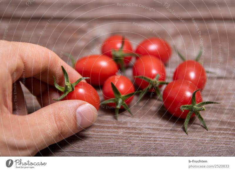 Cocktail-Tomaten Gesunde Ernährung Sommer Hand rot Gesundheit Blüte Holz Lebensmittel klein frisch Finger rund festhalten lecker Landwirtschaft Gemüse