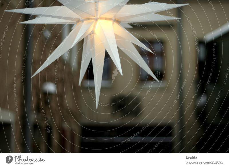 Winterlicht harmonisch Erholung ruhig Innenarchitektur Dekoration & Verzierung Lampe Menschenleer Haus Mauer Wand Fassade Fenster Freude Glück Zufriedenheit