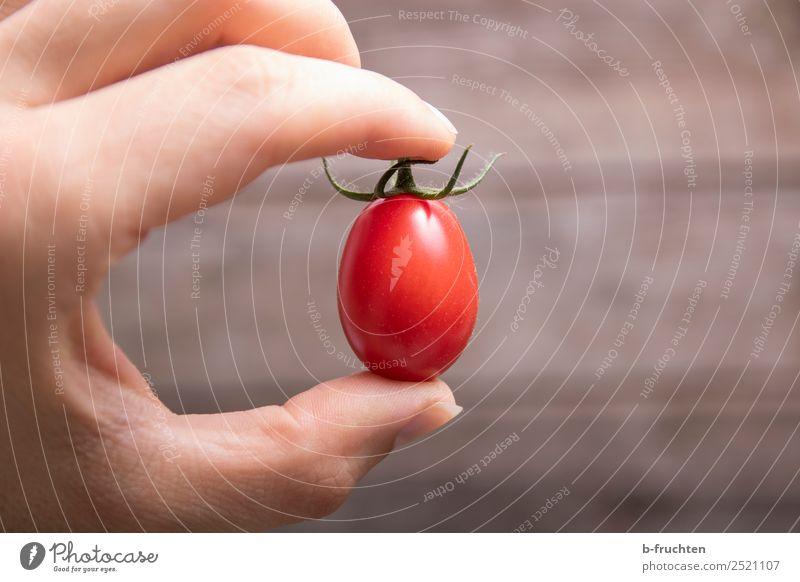 Datteltomate Gesunde Ernährung Hand rot Gesundheit Bewegung Lebensmittel frisch Finger berühren Küche festhalten lecker Gemüse Süßwaren Ernte wählen