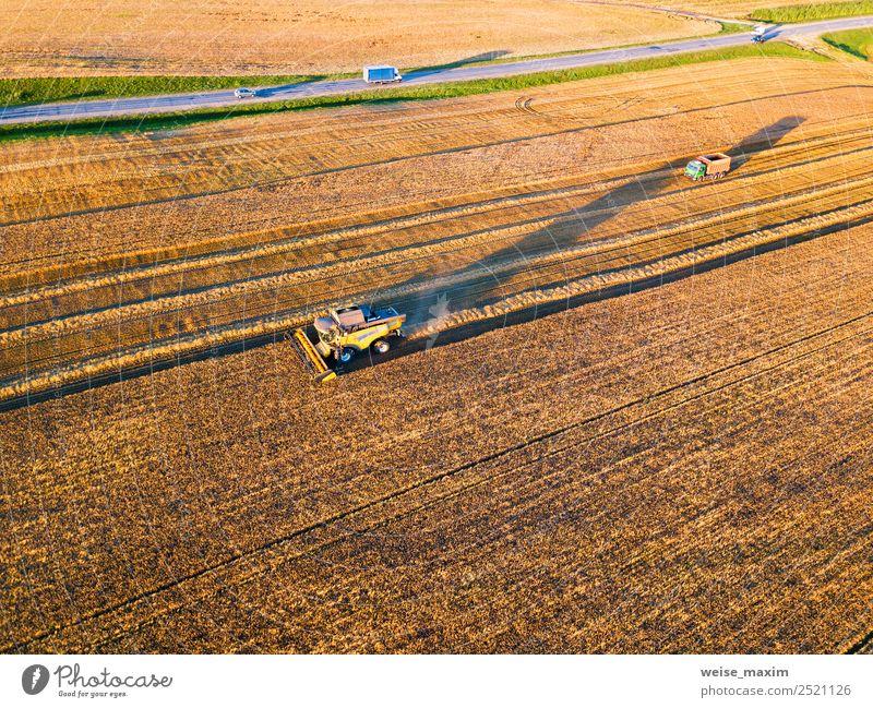 Erntemaschine für den Feldeinsatz Ferne Sommer Arbeit & Erwerbstätigkeit Industrie Business Maschine Natur Landschaft Pflanze Sonnenaufgang Sonnenuntergang
