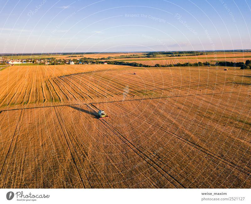 Mähdrescher Maschinenernte Landwirtschaft Goldenes Reife Weizenfeld Sommer Arbeit & Erwerbstätigkeit Industrie Business Natur Landschaft Pflanze Sand Luft