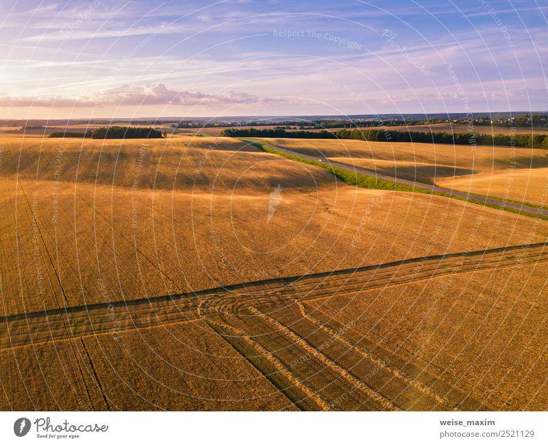 Himmel Natur Sommer Pflanze Sonne Landschaft Wolken Ferne Herbst Wege & Pfade Wiese Business Tourismus Arbeit & Erwerbstätigkeit Feld Aussicht