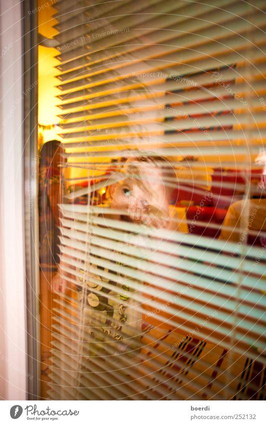 dUrchschauen Mensch Kind Fenster Stimmung Kindheit Tür Neugier beobachten Kleinkind entdecken Durchblick Jalousie durchschaut 1-3 Jahre