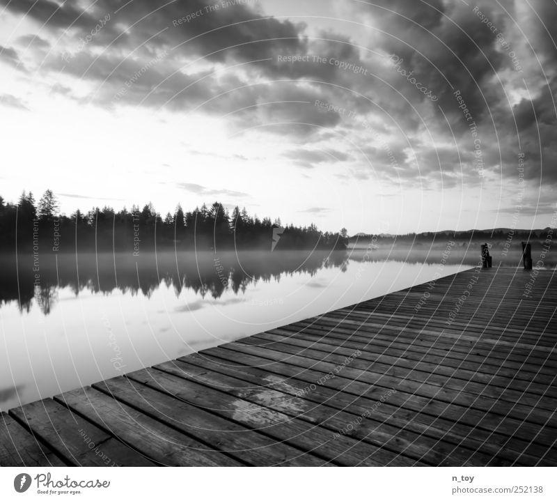 Moorsee Himmel Natur Wasser weiß Sommer Ferien & Urlaub & Reisen Wolken ruhig schwarz Ferne Wald Umwelt Landschaft Gefühle grau Glück