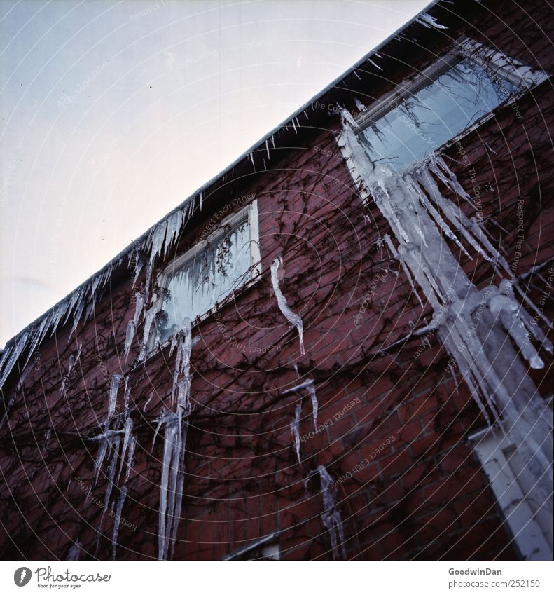 München. Natur Winter Haus kalt Wand Umwelt Architektur Mauer Gebäude Wetter Eis Fassade authentisch Bauwerk Schönes Wetter Eiszapfen