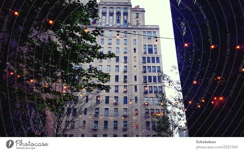 Big City Life Pflanze Stadt Baum Erholung Einsamkeit Architektur Gebäude Fassade Häusliches Leben Wohnung leuchten träumen Hochhaus ästhetisch genießen hoch