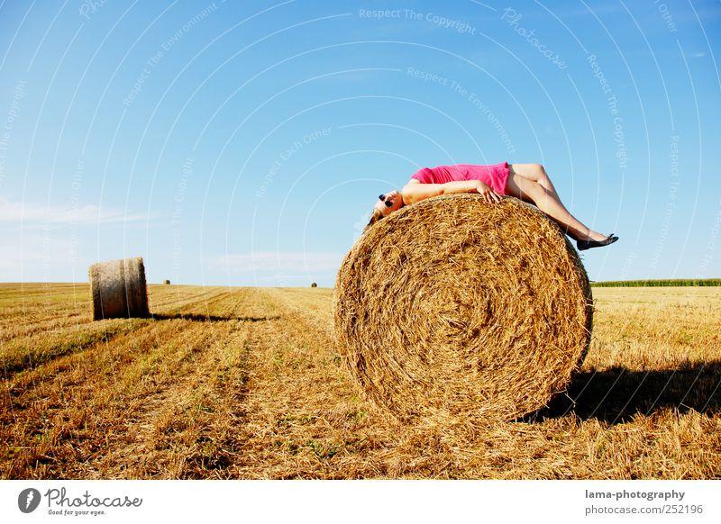 Die letzten Sonnenstrahlen... Frau Mensch Natur Jugendliche schön Sommer Erholung feminin Herbst Erwachsene Feld rosa gold liegen Kleid 18-30 Jahre