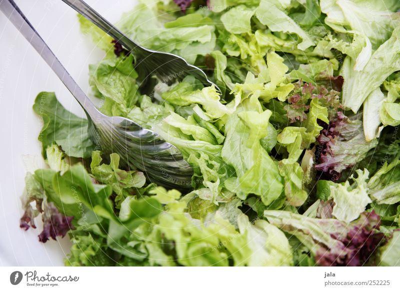 CHAMANSÜLZ | foodfoto weiß grün Ernährung Lebensmittel Gesundheit Diät Mittagessen Bioprodukte Schalen & Schüsseln Salat Salatbeilage Besteck