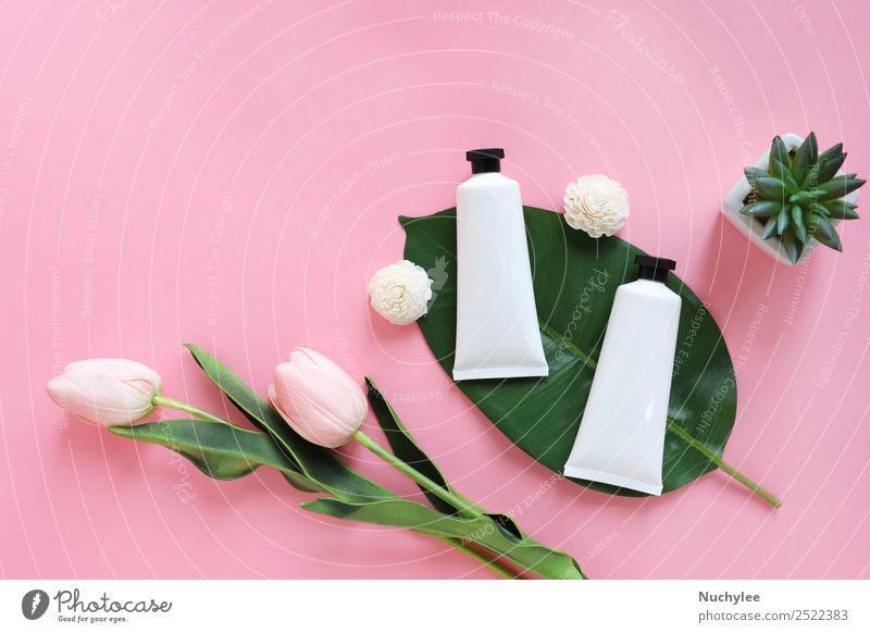 Flache Auflage von Schönheitspflegeprodukten für Mock-ups Kräuter & Gewürze Flasche Körper Haut Gesicht Kosmetik Creme Behandlung Medikament Spa Natur Pflanze