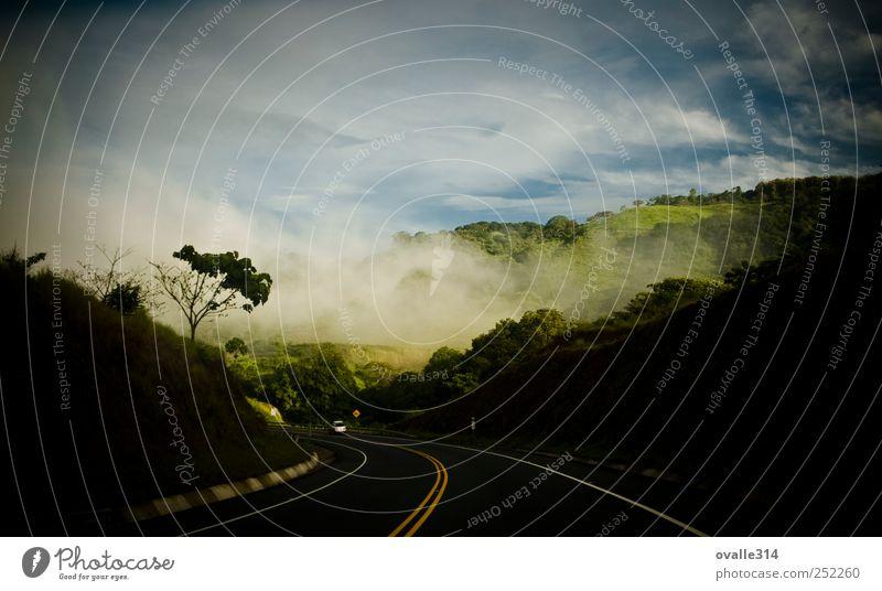 Landschaft Erde Luft Wolken Sommer Schönes Wetter Nebel Baum Wald Berge u. Gebirge Verkehr Verkehrswege Straßenverkehr Autobahn PKW fahren