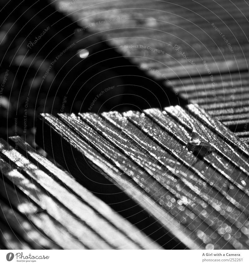 hemmungslos gelöst dunkel Garten nass glänzend einfach Terrasse Holzbrett Flur Furche Gartenbau