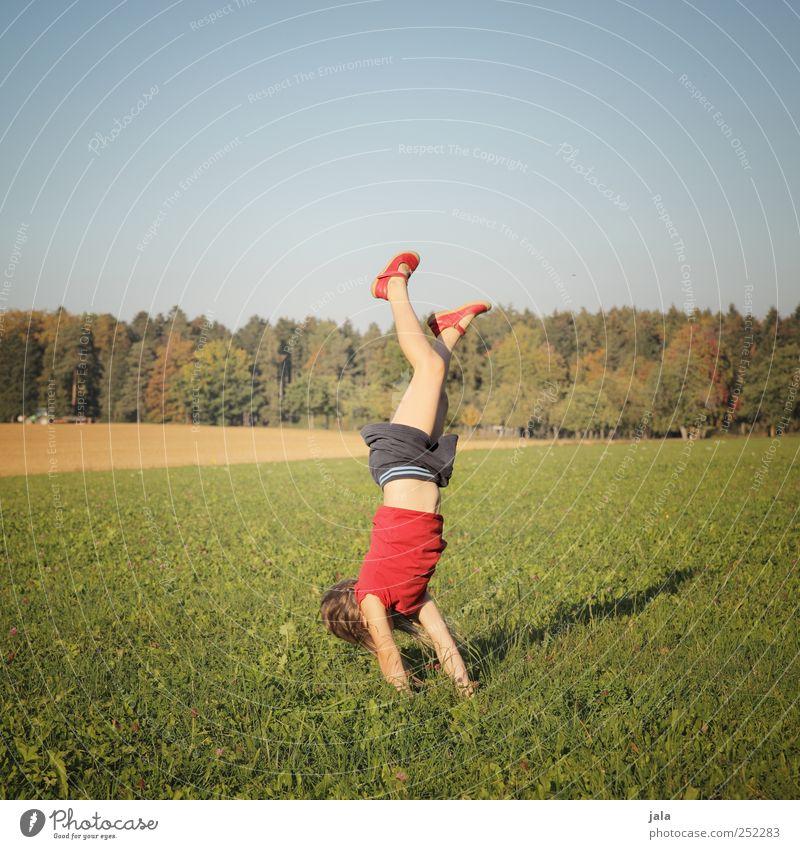 CHAMANSÜLZ | handstandhexel Mensch Kind Mädchen 1 3-8 Jahre Kindheit Umwelt Natur Landschaft Himmel Herbst Pflanze Baum Gras Wiese Wald schön Freude Glück