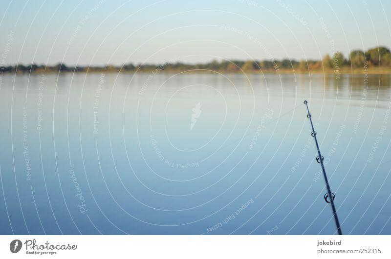 Angleridyll Himmel blau Wasser Einsamkeit ruhig Ferne Erholung Landschaft See Horizont Zufriedenheit Freizeit & Hobby natürlich frei Neugier Seeufer