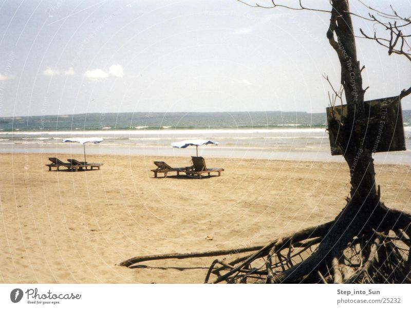 Relaxing on the beach Asien Indonesien Bali Legian Beach Strand Liegestuhl Meer Sommer Erholung kahler Baum Schilder & Markierungen