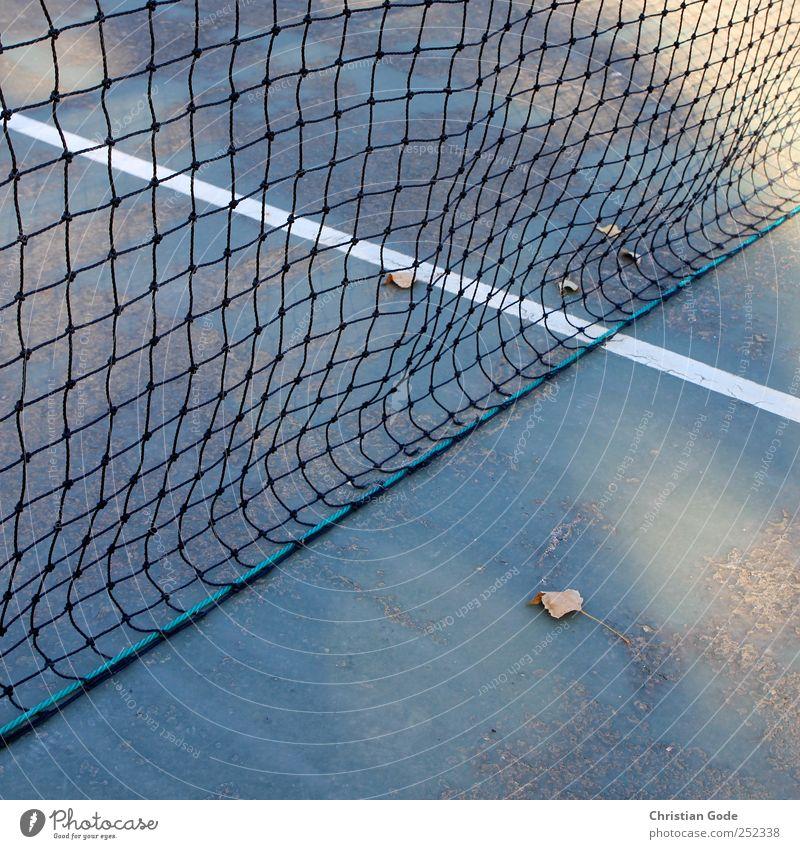40:0 Freizeit & Hobby Spielen Sommer Sport Ball Sportstätten grün Linie T-Linie Netz Tennis Tennisnetz Tennisplatz Blatt weiß Herbst Quadrat diagonal Hardcourt