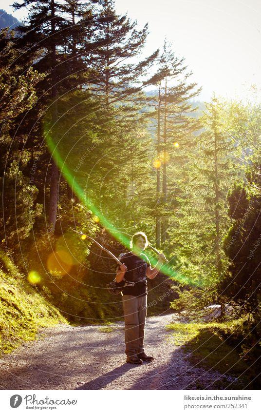 Goldener Herbst Freizeit & Hobby Ausflug Berge u. Gebirge wandern maskulin Leben 1 Mensch Umwelt Natur Sommer Schönes Wetter Baum Sträucher Moos Hügel Felsen