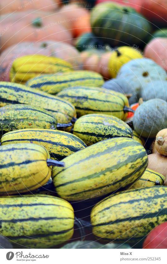 Kürbisse Ernährung Herbst Lebensmittel rund Gemüse Halloween Kürbis Schaufenster Erntedankfest Marktstand Gemüsehändler Wochenmarkt Gemüsemarkt