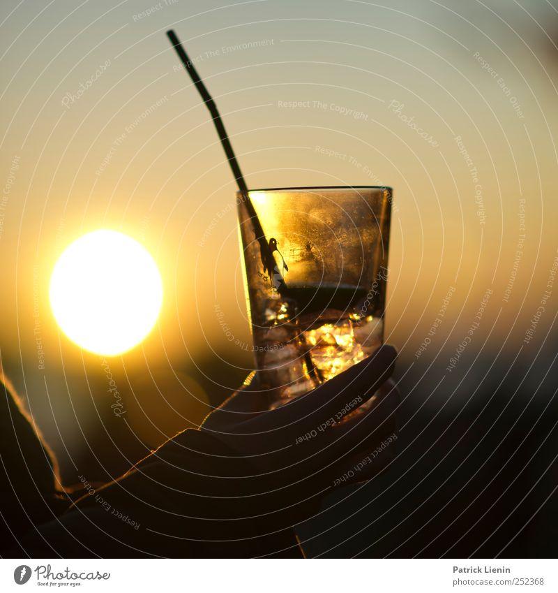 All we have is now Getränk Erfrischungsgetränk Alkohol Longdrink Cocktail Lifestyle elegant Freizeit & Hobby Ferien & Urlaub & Reisen Ausflug Abenteuer
