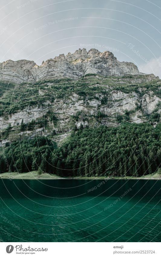 Seealpsee Natur grün Landschaft Berge u. Gebirge Umwelt natürlich Tourismus Alpen Schweiz Gebirgssee Kanton Appenzell